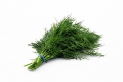 Sabeke Leaves  -1 Bunch(Approx 300 Gms)