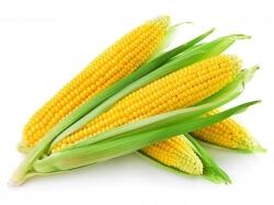 Sweet Corn   - 1 Pc