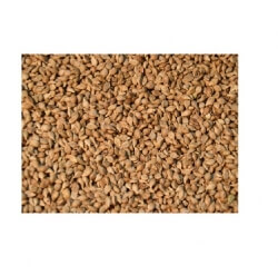 Brown Top Millet 1 Kg-Eco Store