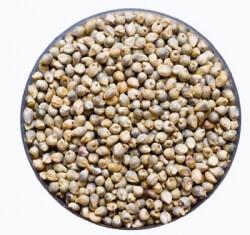 Pearle Millet ( Sajje ) 1 Kg-Eco Store