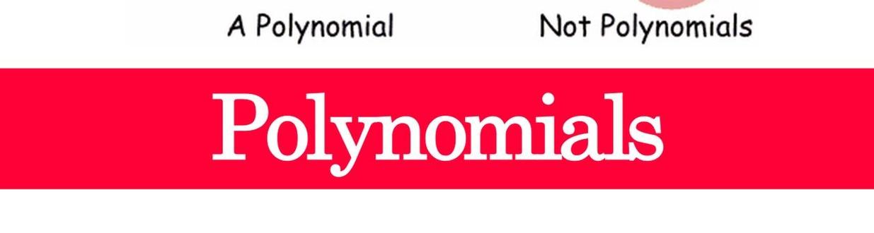 Polynomials Class 10th