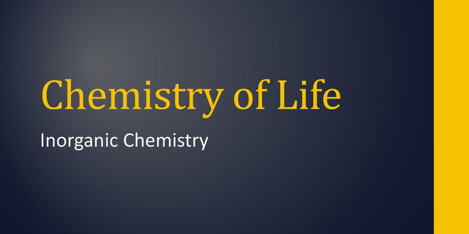 NOC: Inorganic Chemistry of Life Principles and Perspectives
