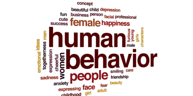 Human Behaviour (Video)