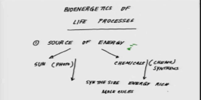 NOC:Bioenergetics Of Life Processes