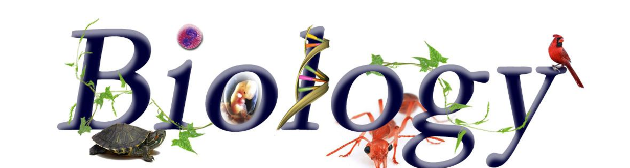 biology experts Cover image