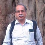 Prof  S  Sankararaman