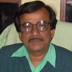 Prof. Dilip Kumar Pratihar