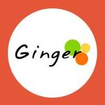 gingerwebsnoida