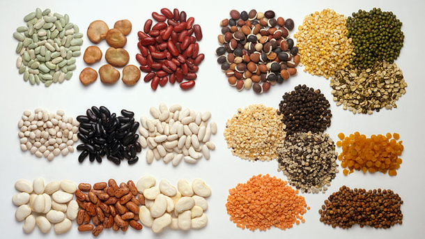 Sources of protein-lean meat, poultry and fish -eggs ...