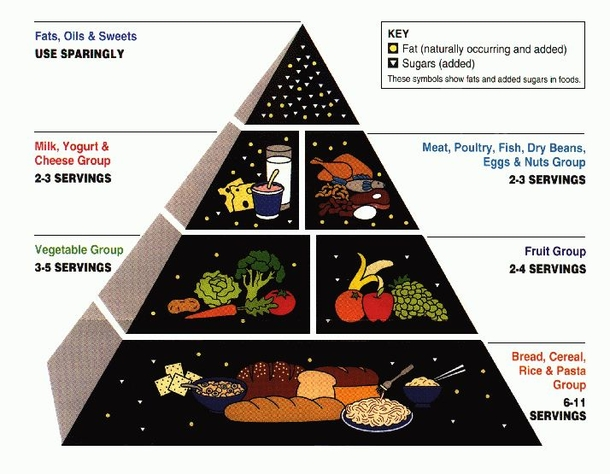 What is food pyramid?<br><br>The food pyramid helps u...