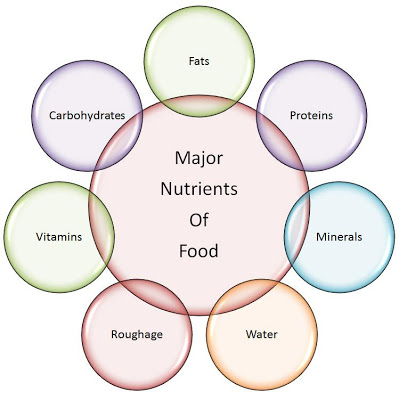 Name the major nutrients in our food?  The major nutr...