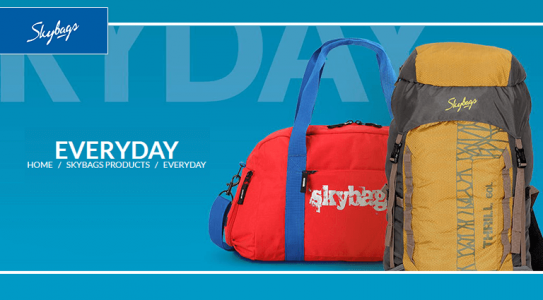 skybags-everyday-bags