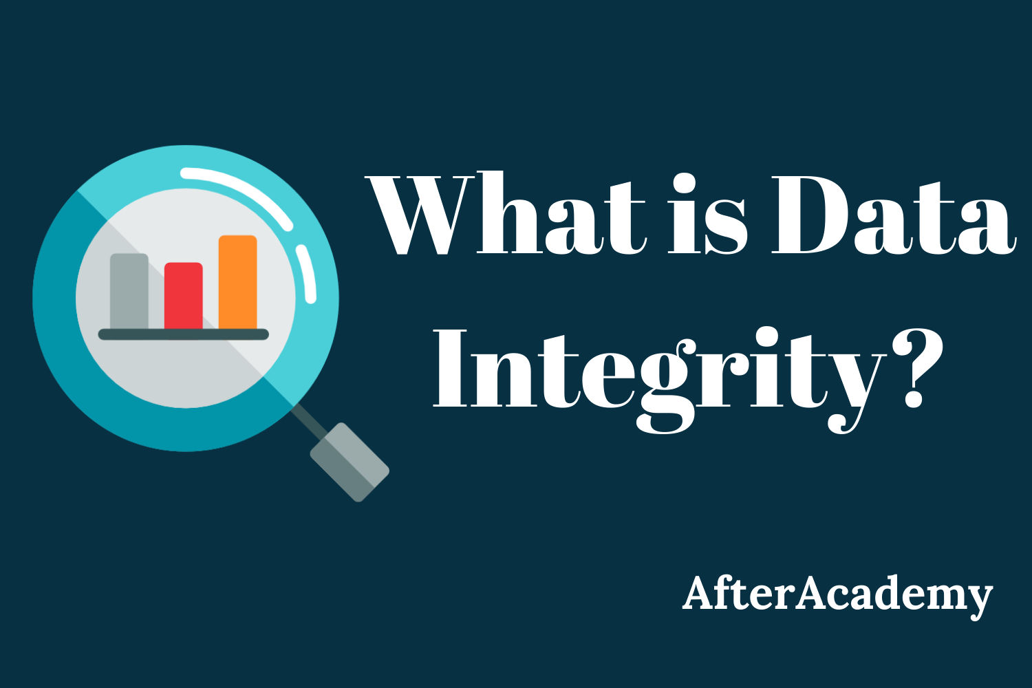 What is Data Integrity?