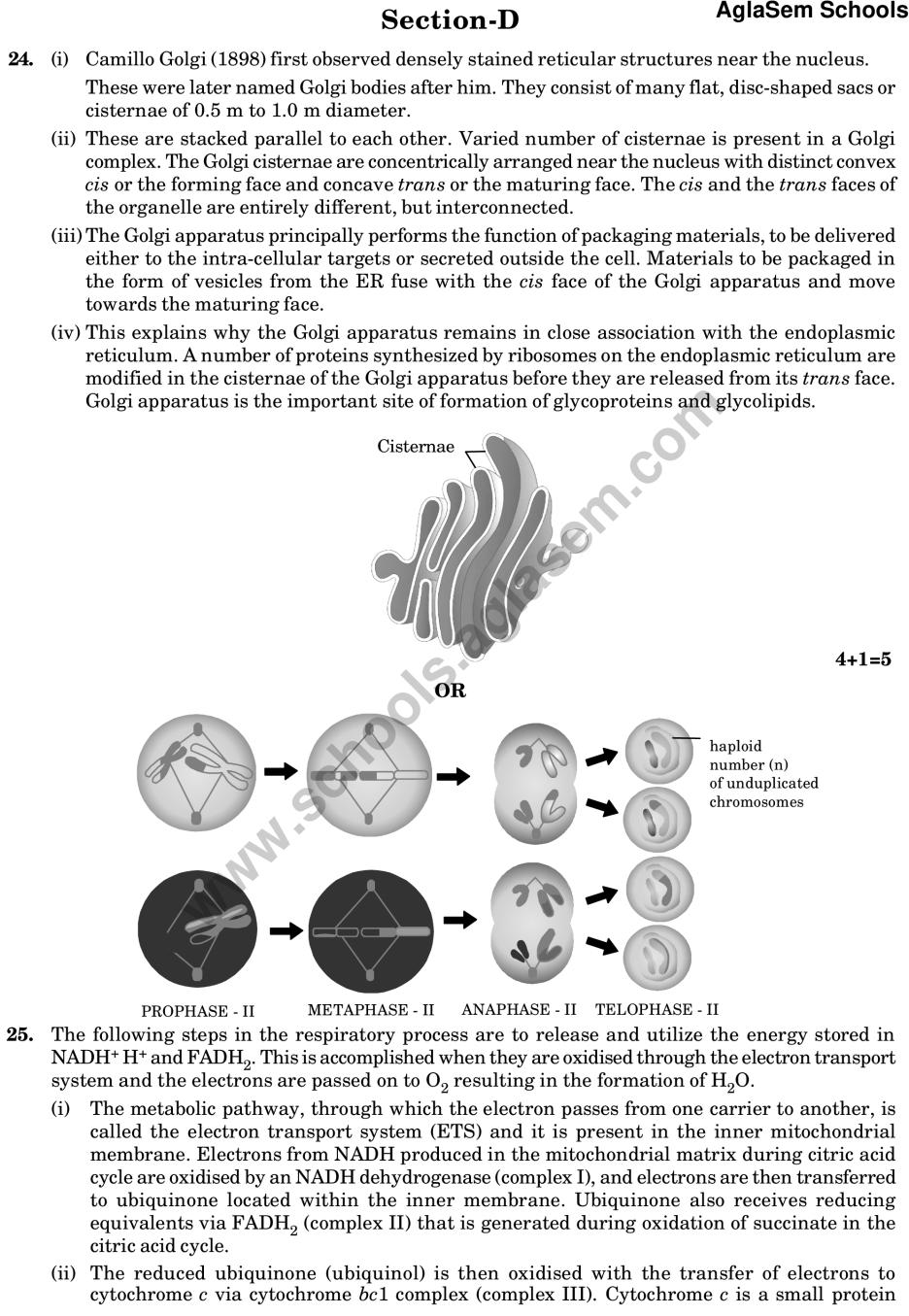 CBSE Sample Paper for Class 11 Biology (Solved) - Set A