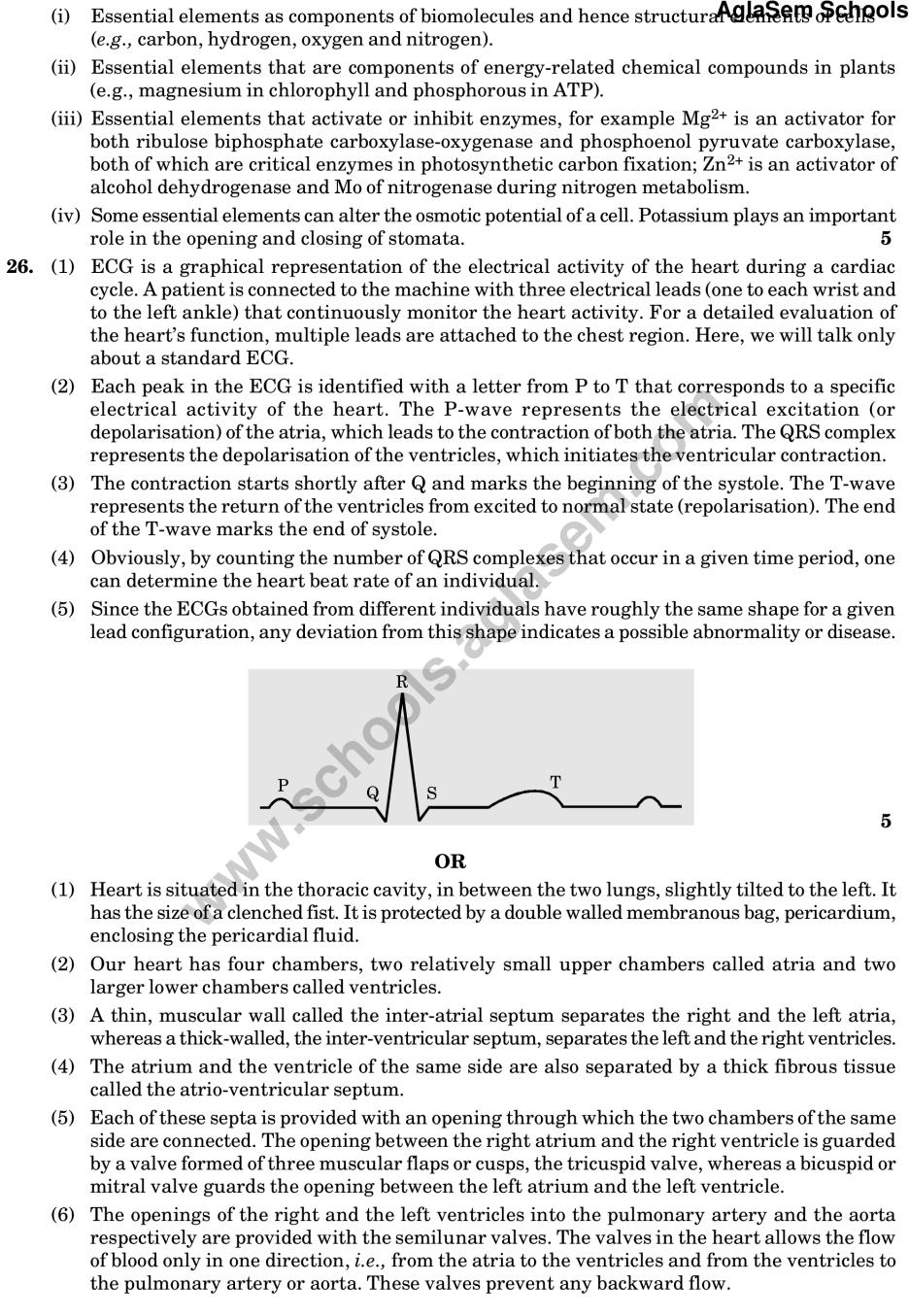 CBSE Sample for Class 11 Accountancy (Solved) - Set B