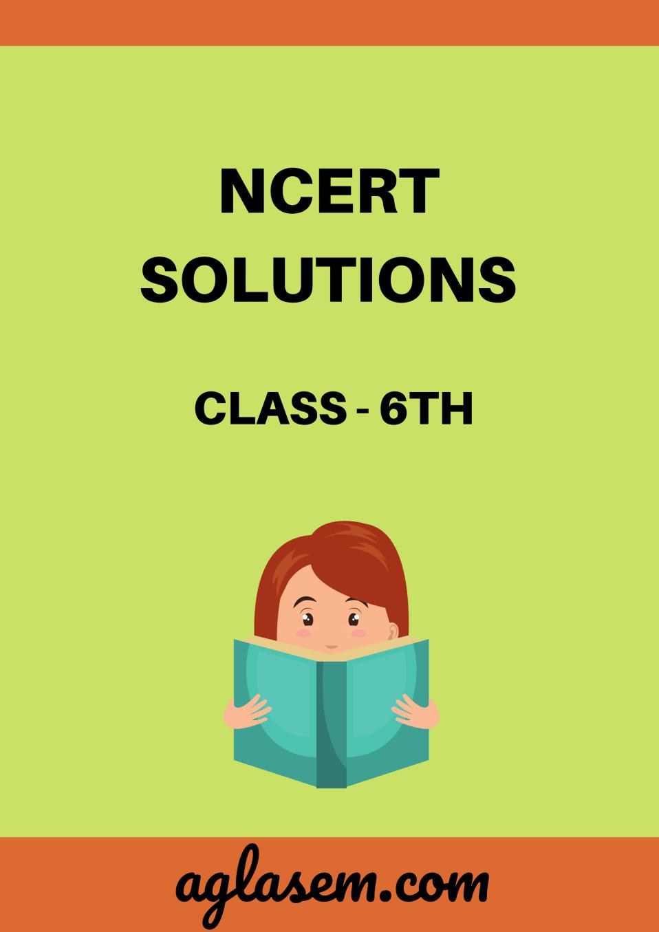 NCERT Solutions Class 6 Science Chapter 1 Food: Where Does It Come From?