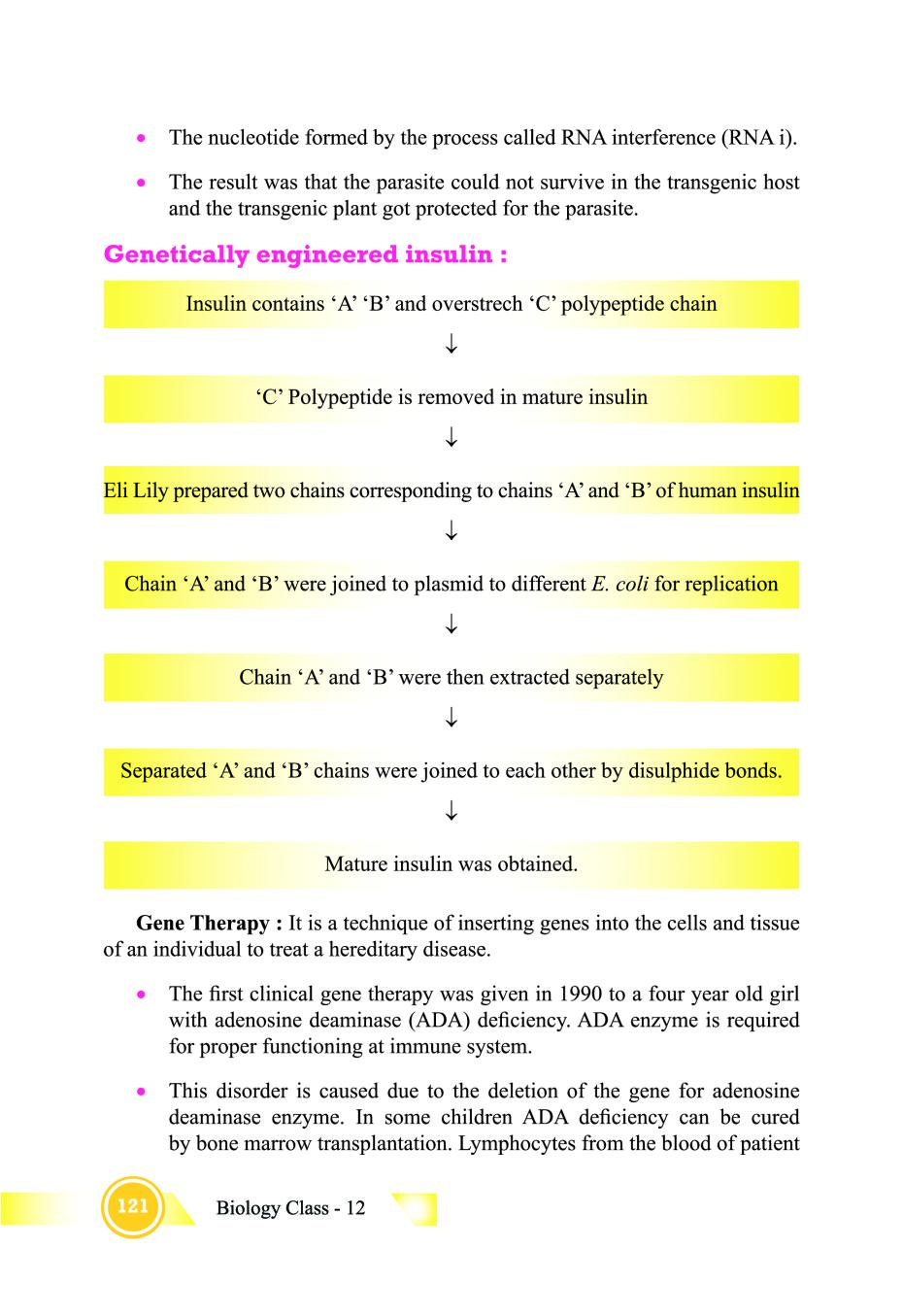 Class 12 Biology Notes for Biotechnology and its Applications