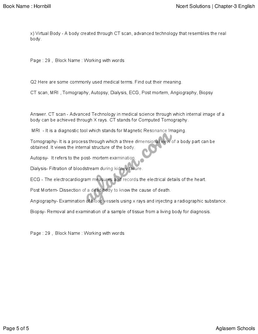 NCERT Solutions for Class 11 English (Hornbill) Chapter 3