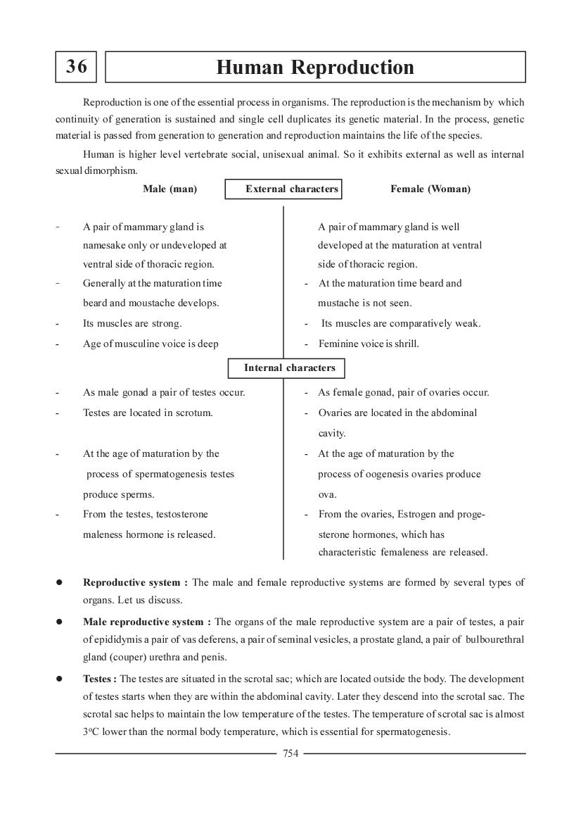 NEET Biology Question Bank for Human Reproduction