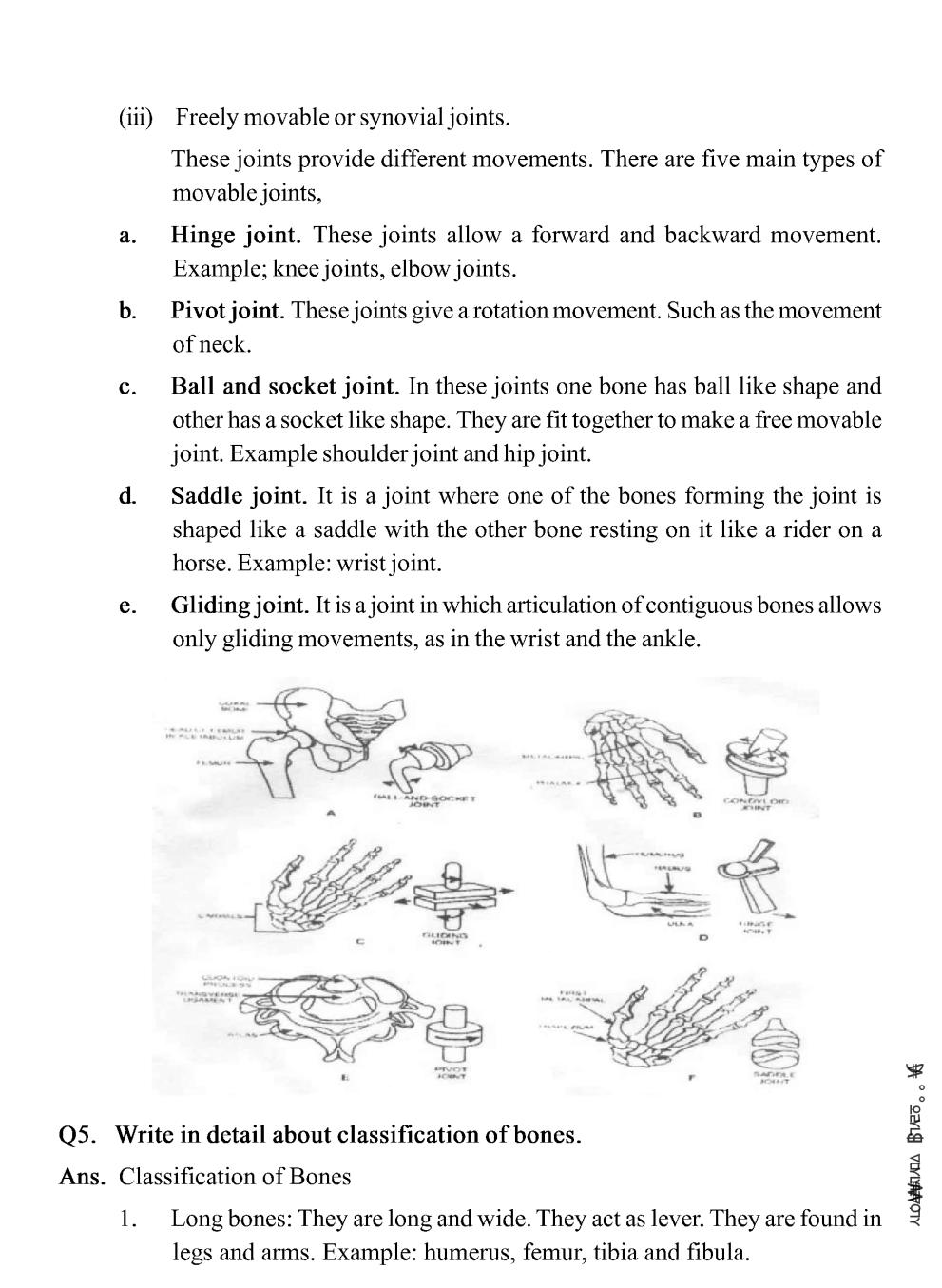 Class 11 Physical Education Notes For Fundamentals of