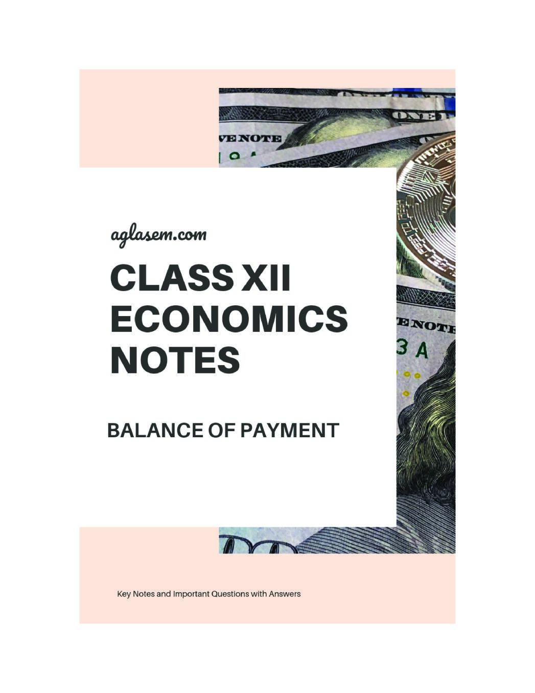 Class 12 Economics Notes for Balance of Payment