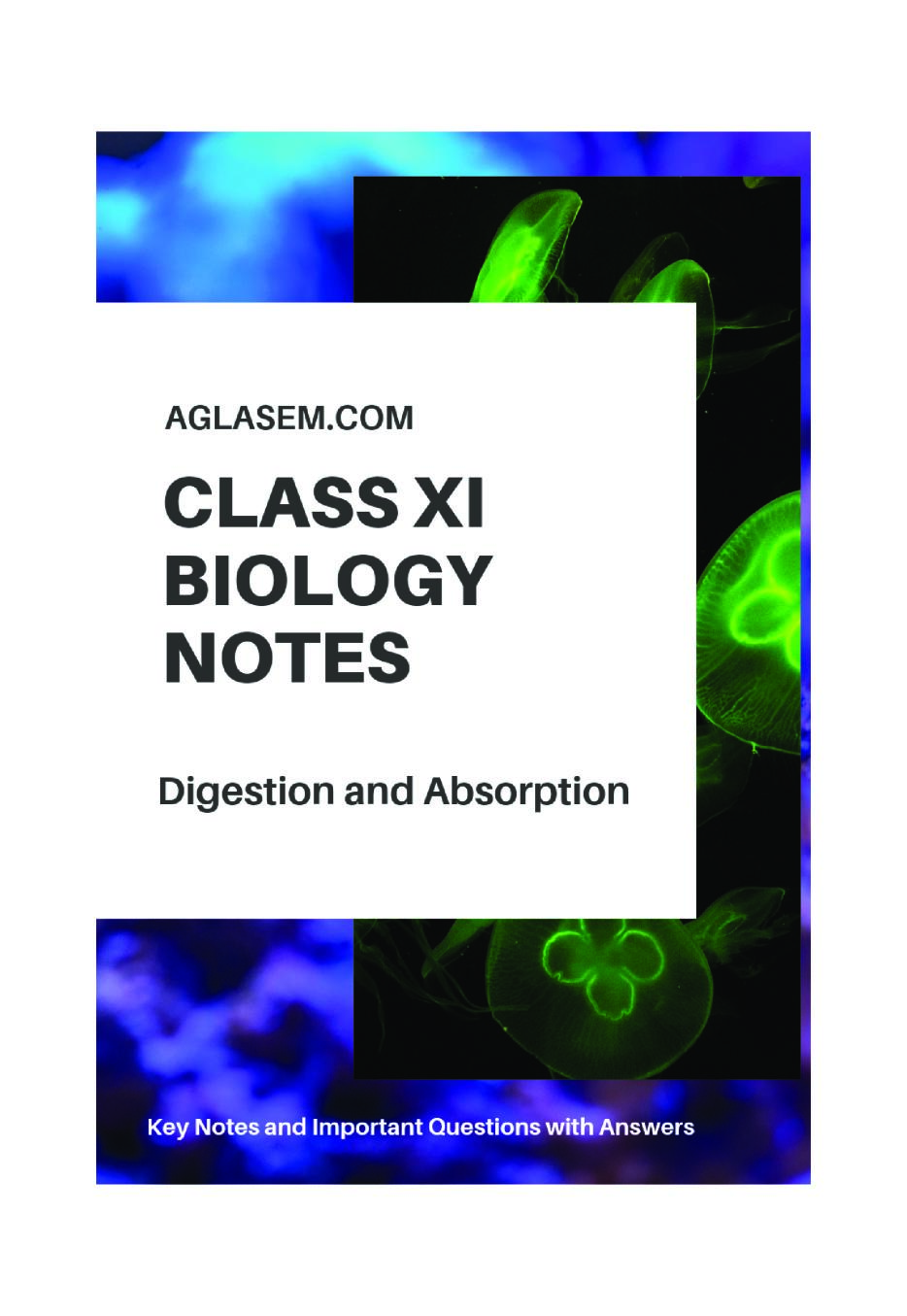 Class 11 Biology Notes for Digestion and Absorption