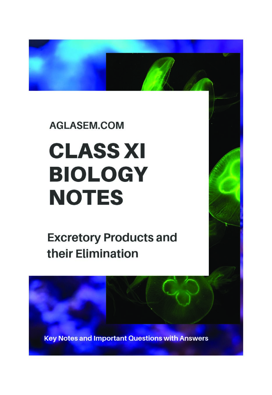 Class 11 Biology Notes for Excretory Products and Their Elimination