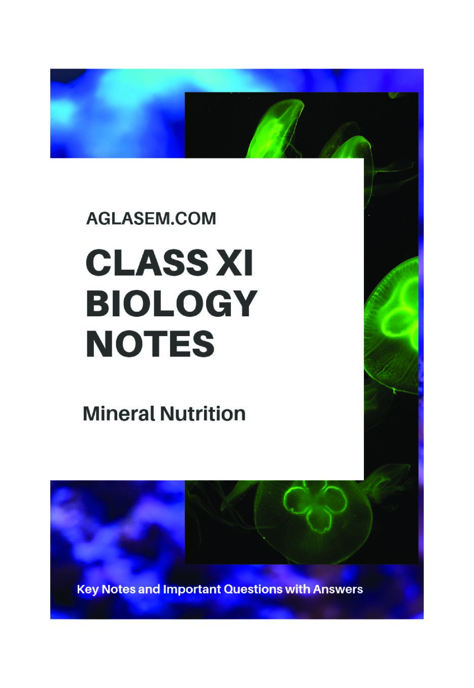 Class 11 Biology Notes for Mineral Nutrition