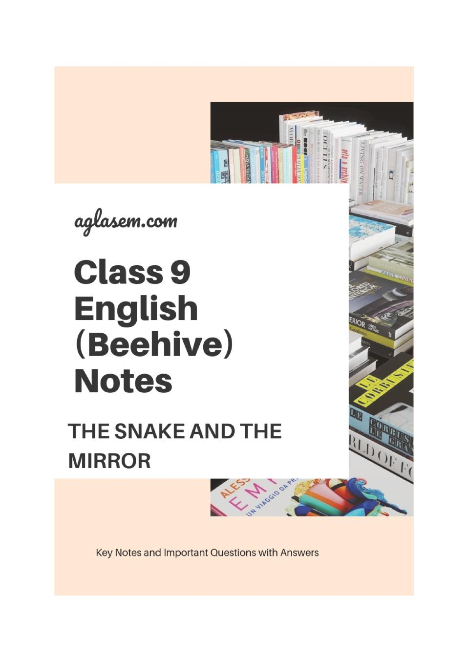 Class 9 English The Snake and the Mirror Notes, Important Question & Practice Paper