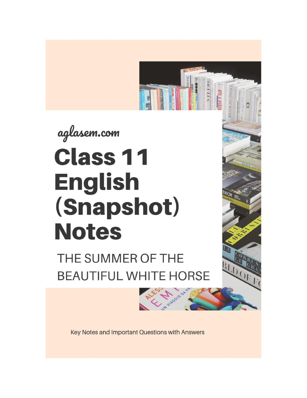 Class 11 English The Summer of the Beautiful White Horse Notes, Important Questions & Practice Paper