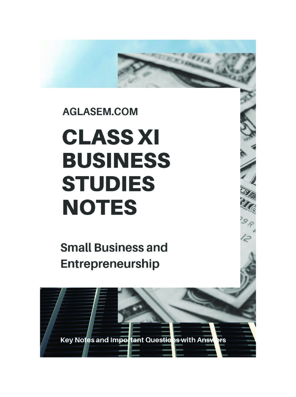 Class 11 Business Studies Notes for Small Business and Enterprises