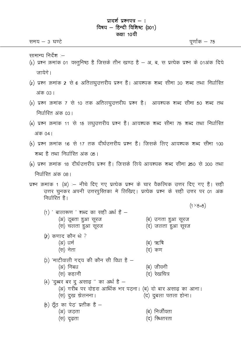 CGBSE 10th Sample Paper 2020 for Hindi Special