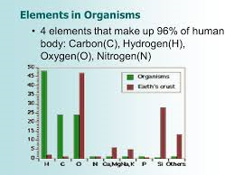 Chemical Reactions In Our Body - Article   ATG
