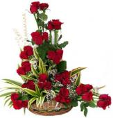 Bunch of 20 Red Roses in Basket