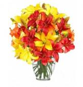 20 Color Full Lilies in Glass Vase