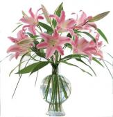 12 Pink Lily in Glass Vase