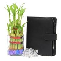 Lucky Bamboo N Notepad