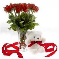 Deep Love of Red Roses & Teddy