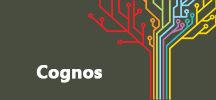 cognos-Bigclasses