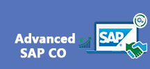 Adv. SAP CO Online Training