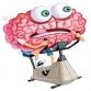We Cognize