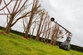 Outstanding Rural Hedge And Tree Trimming Business For Sale