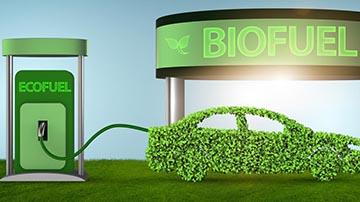 Bio Diesel and Vegetable Oil Processing Factory for Sale in Madhya Pradesh