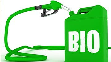 Bio Diesel and Vegetable Oil Processing Factory for Sale in Madhya Pradesh