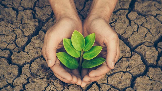 Ecological Startup looking for Investors