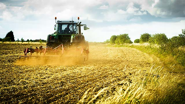 Agriculture and Food related business requires Investors