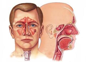 Mundada ENT and Eye Care Center_image0