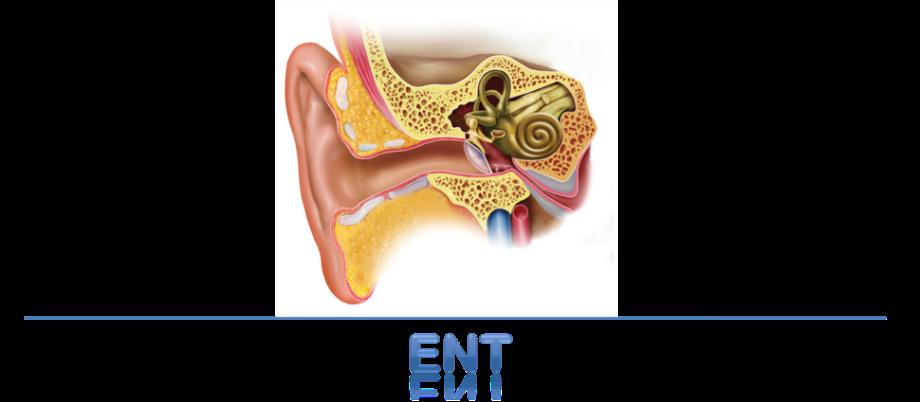 Mundada ENT and Eye Care Center_image1