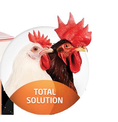 Sapna Poultry Farm_image11