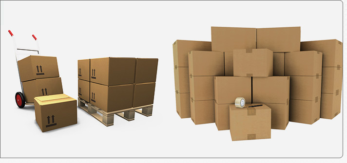 Shree Shyam Cargo Packers and Movers_image0